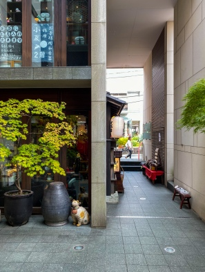 A street in Shibuya.